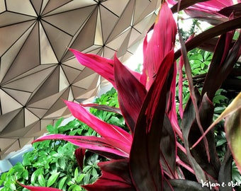 abstract epcot.