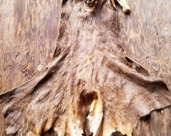 Beautiful Tanned Deer Hide, Tanned Deer Skin, Wapiti, Fur, Throw Rug, Animal Cape, Primitive Crafts, Cosplay Costume Supplies, Soft Leather