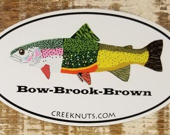 Rainbow Brook Brown Trout Sticker Decal