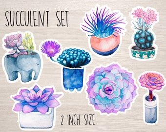 Succulent Cactus stickers set of 7 watercolor laptop sticker flakes 2 inch Vinyl Decal bumper planner stickers botanical flower notebook