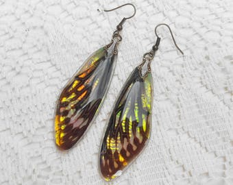 Fantasy Earrings - Fairy Accessories - Nature Lover Gift - Insect Jewelry - Iridescent Earrings - Cicada Wings - Opal Fire