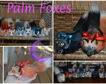 Palm Foxes