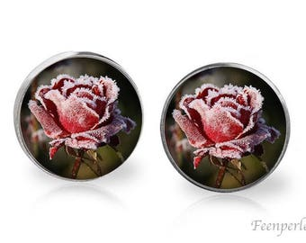 Stud Earrings Frosted 22