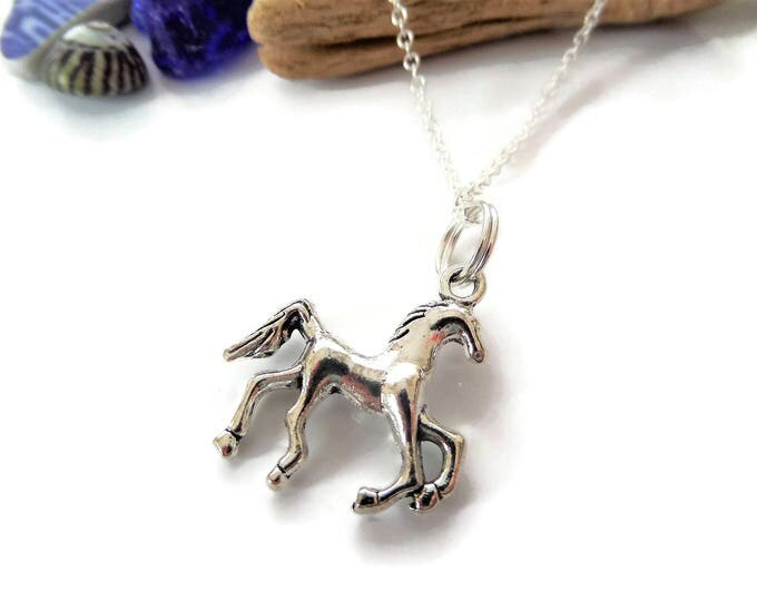 Horse necklace, horse jewellery, love horses gift, horse riding gift, horse riding necklace, horse jewelry gift, horse favors, party favors
