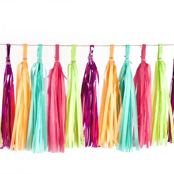 Tropical Tango Tassels, Tissue Tassels, Tassel Banner, Birthday Party Decor, DIY Tassels, Girl, Wedding, Baby Shower Bachelorette Rainbow
