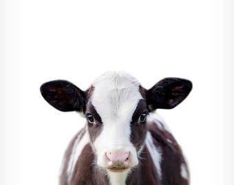 Baby cow print, Farm animal prints, Baby animal prints, The Crown Prints, Nursery wall decor, Animal art, Baby room wall art, Calf print