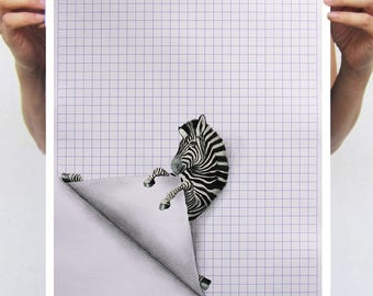 Zebra illustration, zebra artwork, zebra painting, zebra drawing by Coco de Paris
