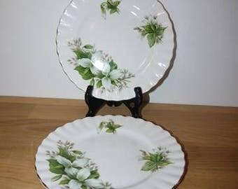 Royal Albert - Trillium - Small plate - England - Bone China -