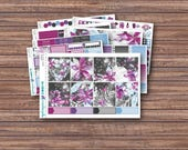 Berry Frost Weekly Planner Stickers | ECLP | Happy Planner | Recollections Planner | Weekly Planner Kit