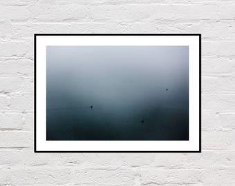 Foggy Lake Print, Lake Printable, Ducks Print, Lake House Decor, Lake Print, Grey Wall Art, Blue Water Print, Lake Ducks Photo