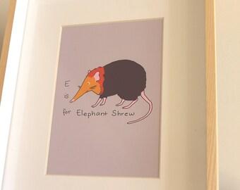 E is for Elephant Shrew - Fun Educational Alphabet Digital Print