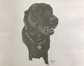 Dog-Lover Drawing