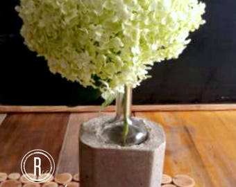 Concrete vase is not just that!