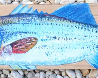 Hand-Painted Striped Bass on Reclaimed Wood-Made to Order-Contact for Price