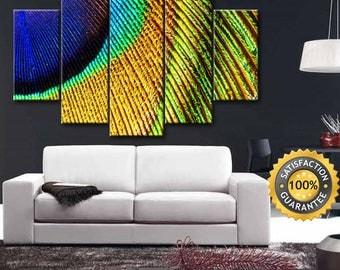 Paechcok canvas, Paechcok Feather, Feather canvas, Paechcok Wall Art, Paechcok Feather Art, Canvas Wall Art, Paechcok, Feather, Wall Decor
