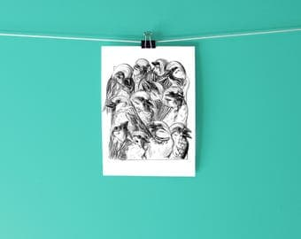 Sparrows Print / Illustration / Drawing