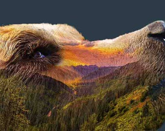 Double Exposure Bear (Sunset)