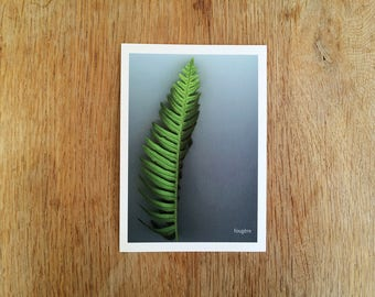 "Postcard plants ""Fern"". ref: P-3"