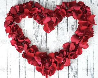 Love Is All Around Collection | Valentine's Day | Styled Stock Photography | Red Roses | Petals | Digital Photography | Heart |