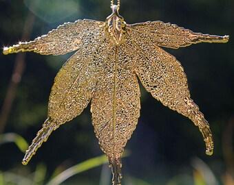 Gold pendant genuine Japanese Maple Leaf