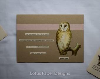 Handmade Blank Greeting Card (Folded A6) - Barn Owl - Golden Guide to BIRDS