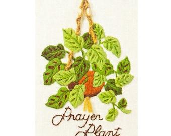 Vintage House Plant Crewel Kit – Botanical Stamped Embroidery Pattern - 70s Sunset Designs Jiffy Stitchery Prayer Plant