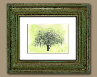 Tree Art Watercolor Print - Hand Painted and Signed - Savannah's Hunter Oak Tree Drawing