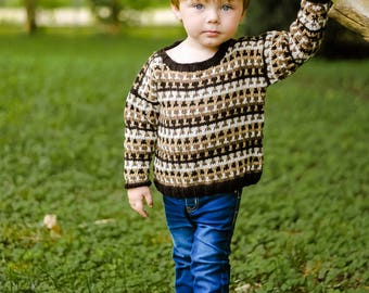 Boys Baby Sweater -- Brown Striped Sweater -- WARREN STREET -- Blue, Purple, and Green Hoodie -- Hand Knit Sweater -- Baby Gift Baby Shower