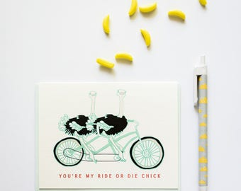 Ride or Die Chick Bike Riding Ostriches Friendship Greeting Card