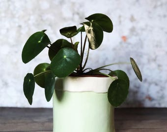 Mint Green Planter