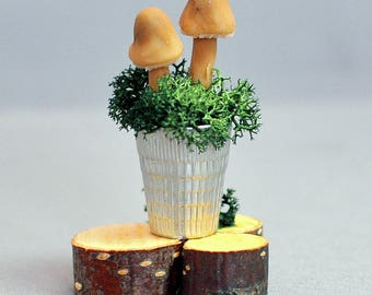 Miniature Mushroom Thimble Garden Fairy or Dollhouse Miniature Halloween Witch Potion Toadstool