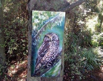 New Zealand OWL, Morepork Ruru, Native Bird NZ, Outdoor Wall ART Panel from my original silk painting, Outside art, Garden Art, Gift for him