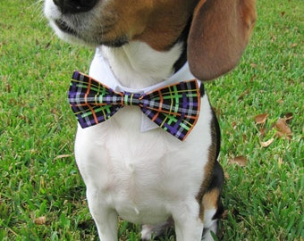 Halloween Plaid Bow Tie, Necktie, or Bow on a Shirt Style Collar for both Dogs & Cats