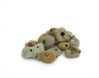 All Natural 13 Small Holey Beach Stones / Rocks with holes