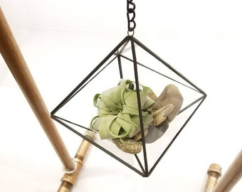 Geometric Air Plant Holder/ Hanging Octahedron Terrarium /