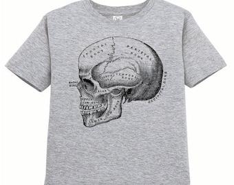 Toddler Anatomical Skull Tshirt, Anatomy T Shirt, Horror, Vintage Medical Illustration Tee, Childrens Clothes Kids Clothing, Ringspun Cotton