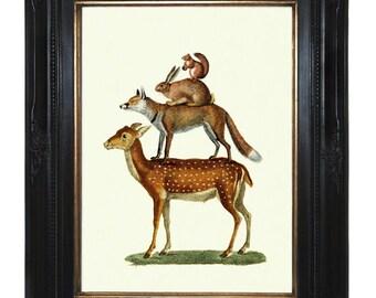 Woodland Animals Art Print Pyramid Victorian Steampunk Art Print Deer Fox Rabbit Squirrel Natural History Zoo Circus Surrealism