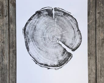 183 year old Tree, Uinta Forest, Lodge Pole Pine, Tree Ring Art Print, Natural Geometry Art. Real Tree Stump Art, Geometric Art Print
