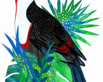Limited edition Giclée Toucan Bird art print