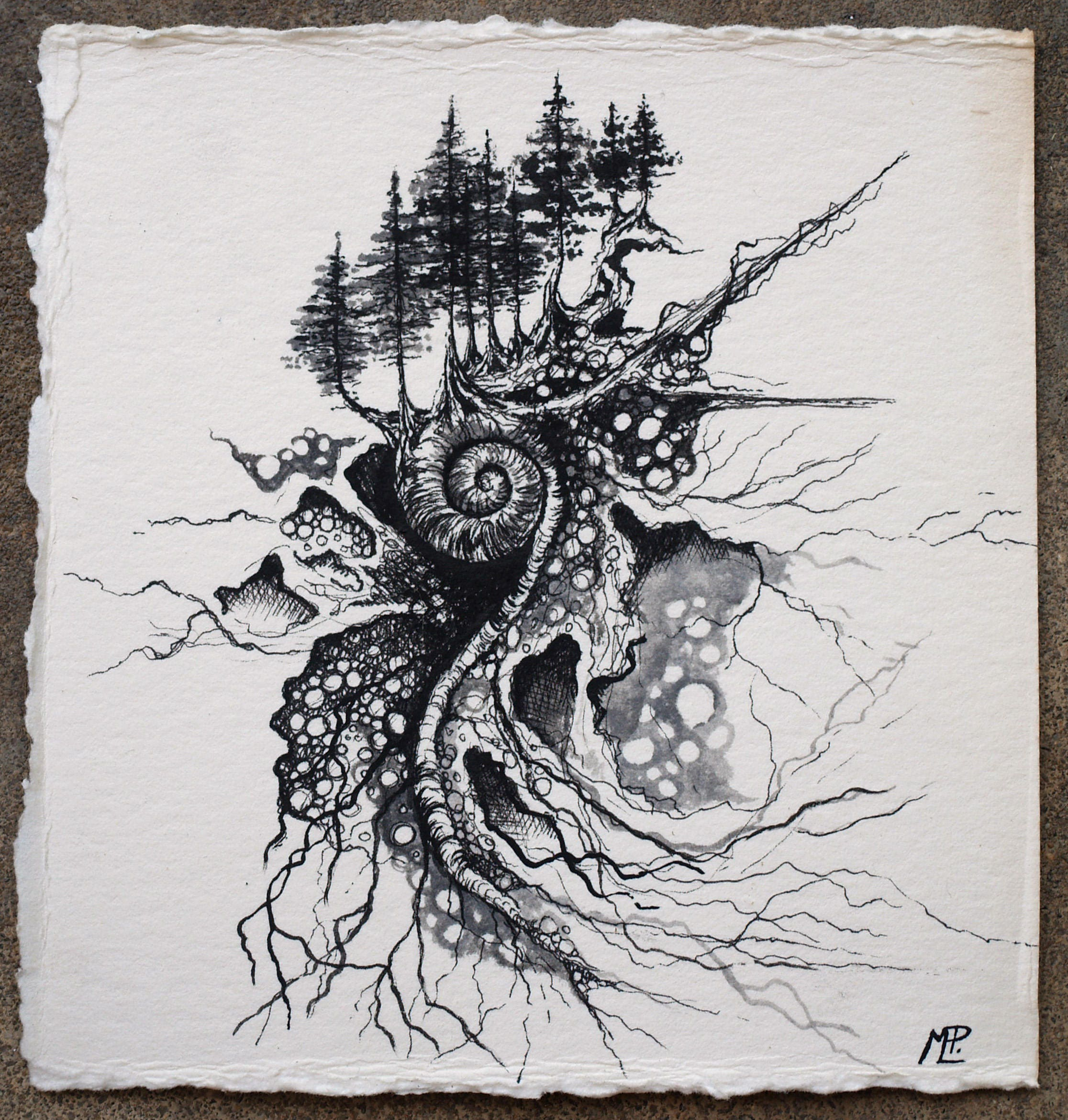 Abstract Illustration Pen And Ink Ink Wash Nature Art