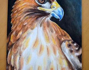 Red Tail Hawk Falcon Portrait Watercolor Painting