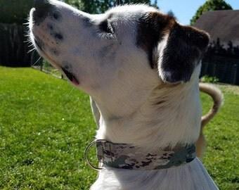 OCP/Scorpion Army dog collar