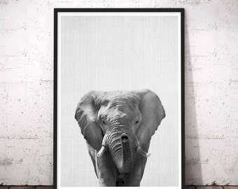 Elephant Print, African Safari Nursery Decor, Elephant Animal Photo, Safari Baby Shower, Kids Large Poster, Printable African Animal Print