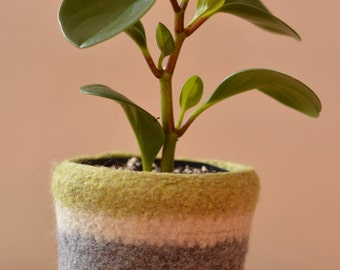 Felted Wool Planter-sml