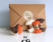 Robin Crochet Kit / DIY Kit Craft Kit Bird Decoration / Gift for Crocheter / Christmas Ornament Kit Robin Crochet Pattern