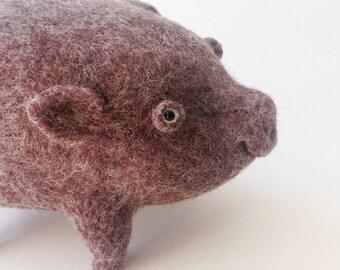 Little boar)