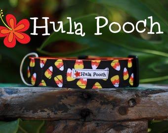"Halloween Dog Collar ""Candy Corn"" Medium, Large, Wide Adjustable // FREE SHIPPING"