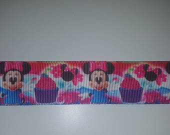 Ribbon 25mm the meter minnie
