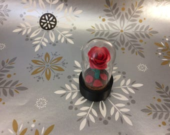 Free Shipping, Beauty and the Beast rose, mini rose, rose dome, red rose, red enchanted rose, belles rose, rose in glass, fallen petal, rose