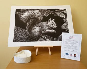 Red Squirrel Giclée Print